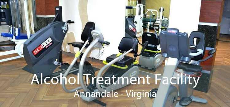 Alcohol Treatment Facility Annandale - Virginia