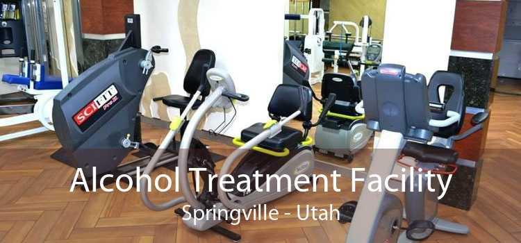 Alcohol Treatment Facility Springville - Utah