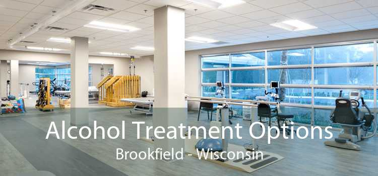 Alcohol Treatment Options Brookfield - Wisconsin