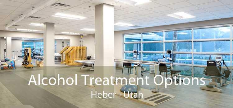 Alcohol Treatment Options Heber - Utah