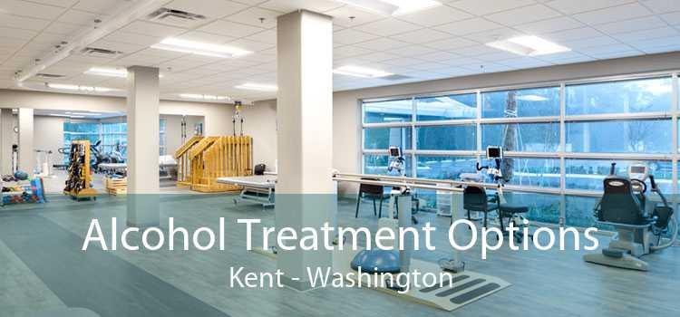 Alcohol Treatment Options Kent - Washington