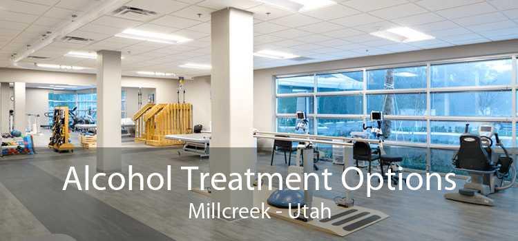 Alcohol Treatment Options Millcreek - Utah