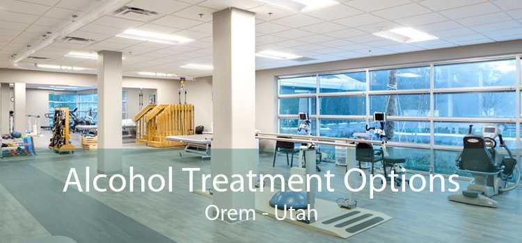 Alcohol Treatment Options Orem - Utah