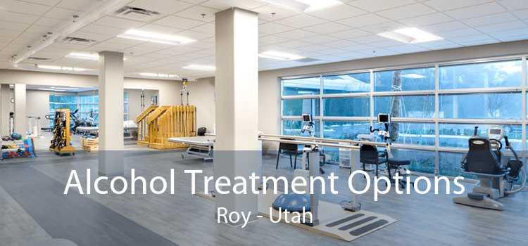 Alcohol Treatment Options Roy - Utah