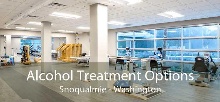 Alcohol Treatment Options Snoqualmie - Washington
