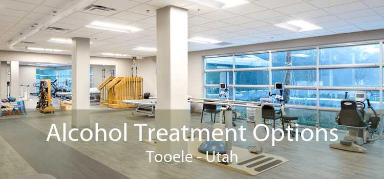 Alcohol Treatment Options Tooele - Utah