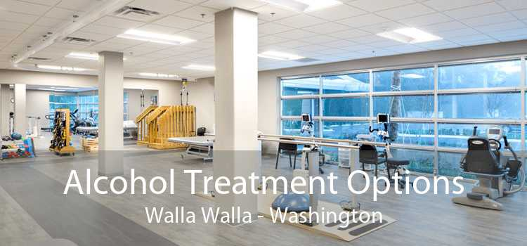 Alcohol Treatment Options Walla Walla - Washington
