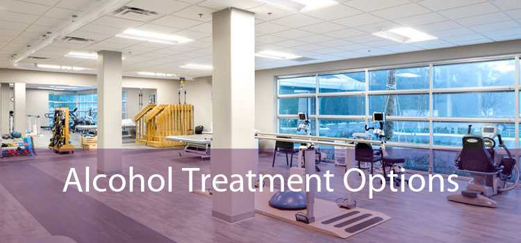 Alcohol Treatment Options